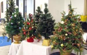 Small Christmas trees for sale at St. Vincent de Paul's Fond du Lac.