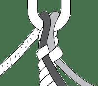 SpliceDiagram-step2