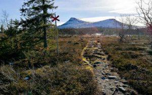 Snötäckt Hovärken i oktober. Foto: Destination Lofsdalen