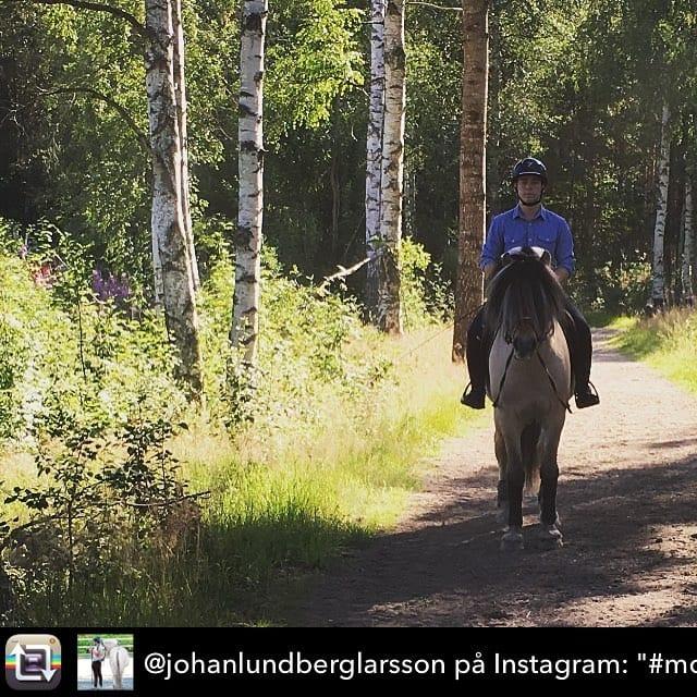 Morgontrning p fjord SM fr Johan Lundberg Larsson med Kronoshellip
