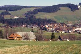 Schwarzwald 1995
