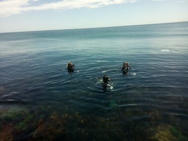 Start of the dive...