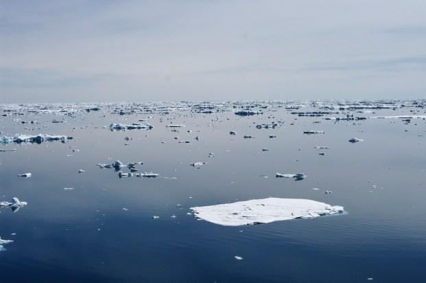 Antarctica (259 of 290)