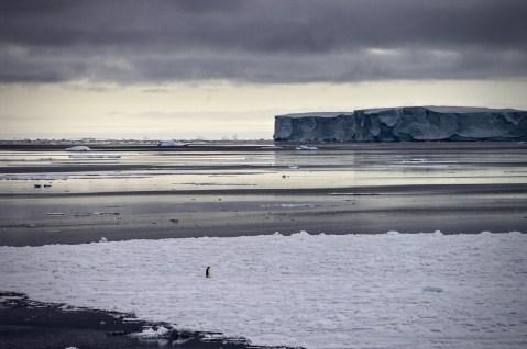 Antarctica (76 of 290)