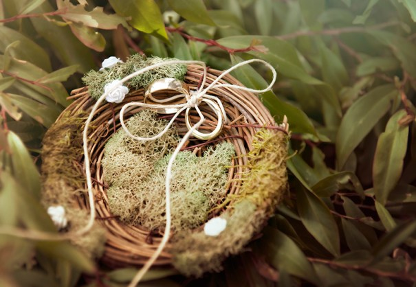 Rings in a nest