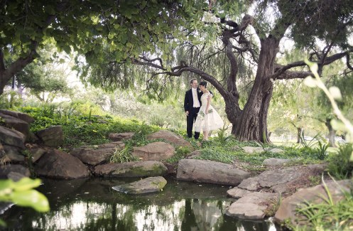 Veale Gardens Engagement