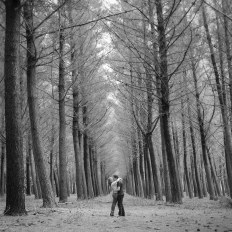 Burbrook Forest couples shoot