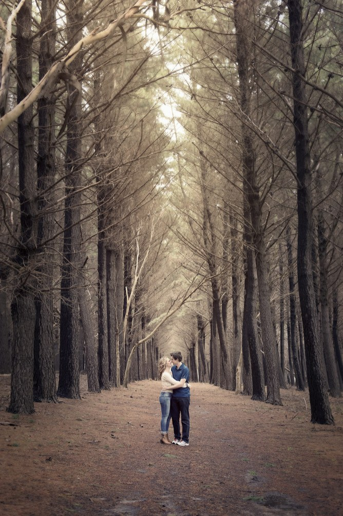Hugging in a forest