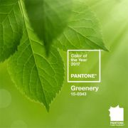 Pantone colour of the year 2017 has been announced