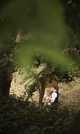 Through the foliage