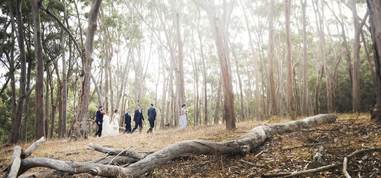 Bridal party walking through scrub