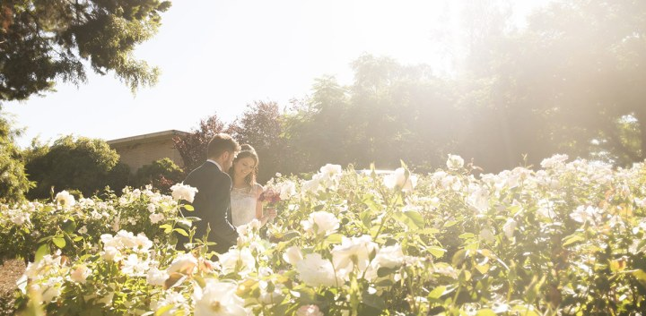 Bride and groom in roses