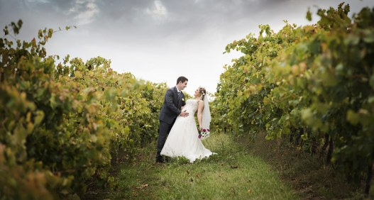 Dancing in the Coriole vineyards