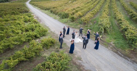 Drone photo in the vineyards