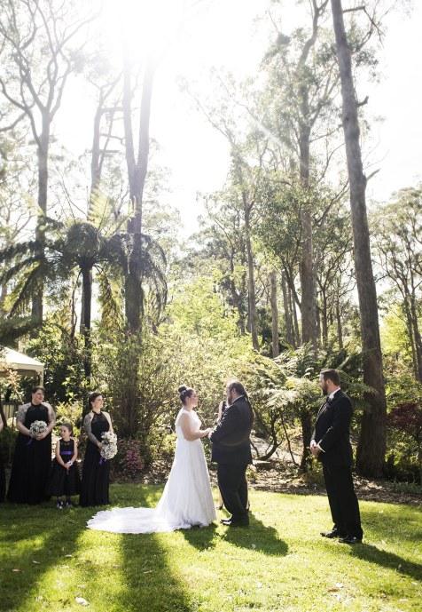 Mt Lofty Botanic Gardens Wedding
