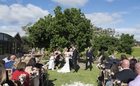 Coriole Vineyard wedding ceremony