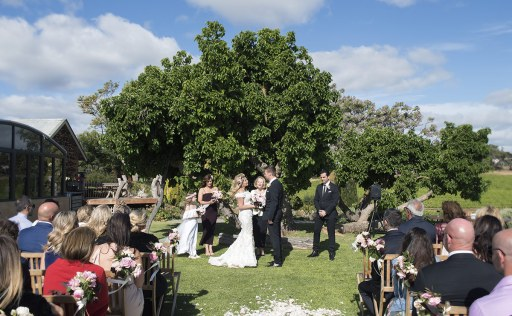 Coriole Vineyard wedding ceremony