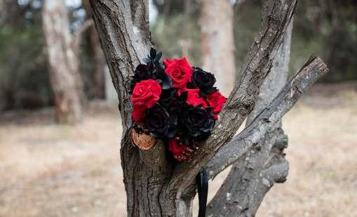 Bridal bouquet in tree
