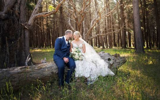 Bride and groom sitting in front of wedding tree