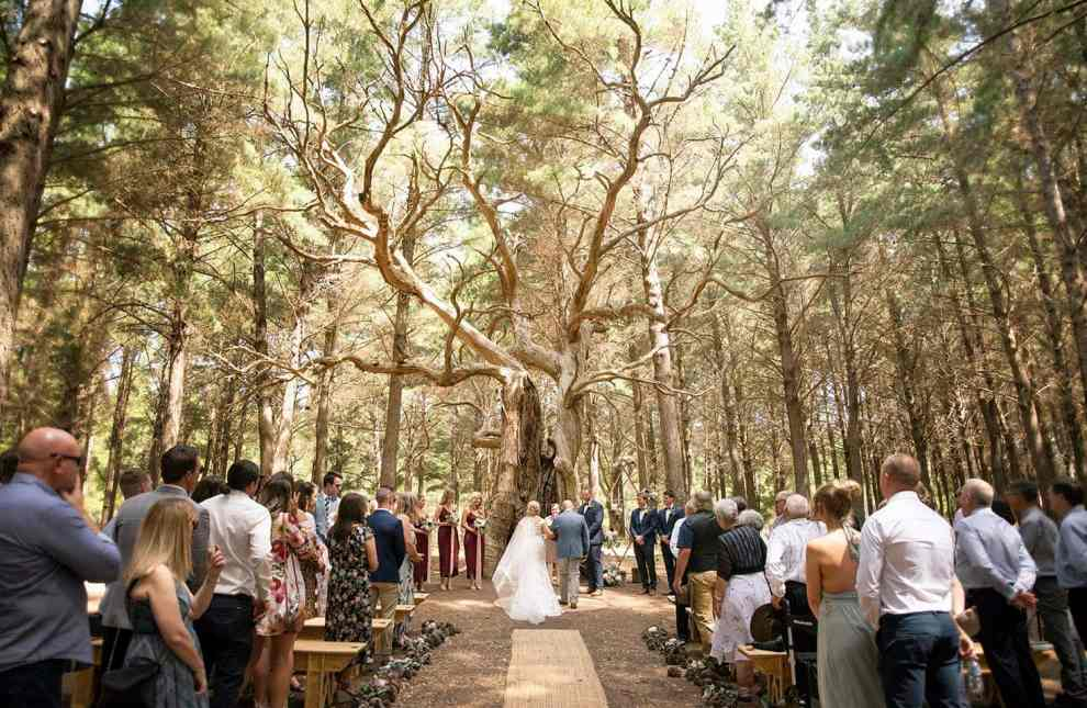 Burbrook forest wedding ceremony