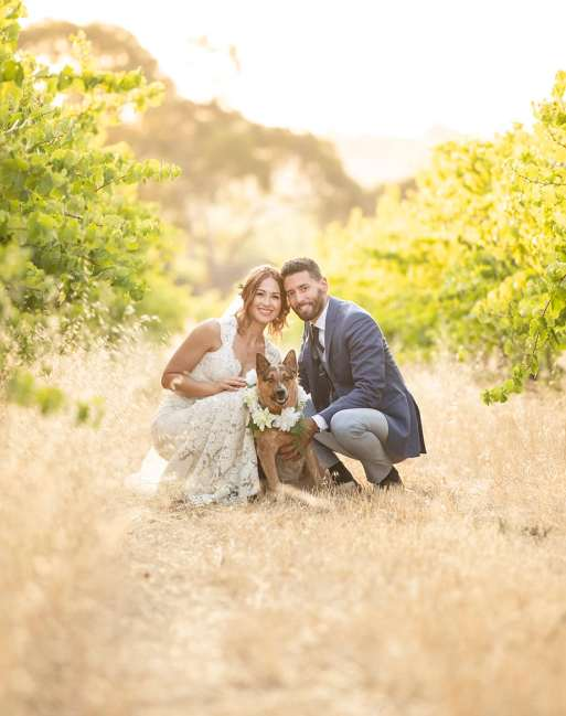 Bride and Groom together in the vineyard