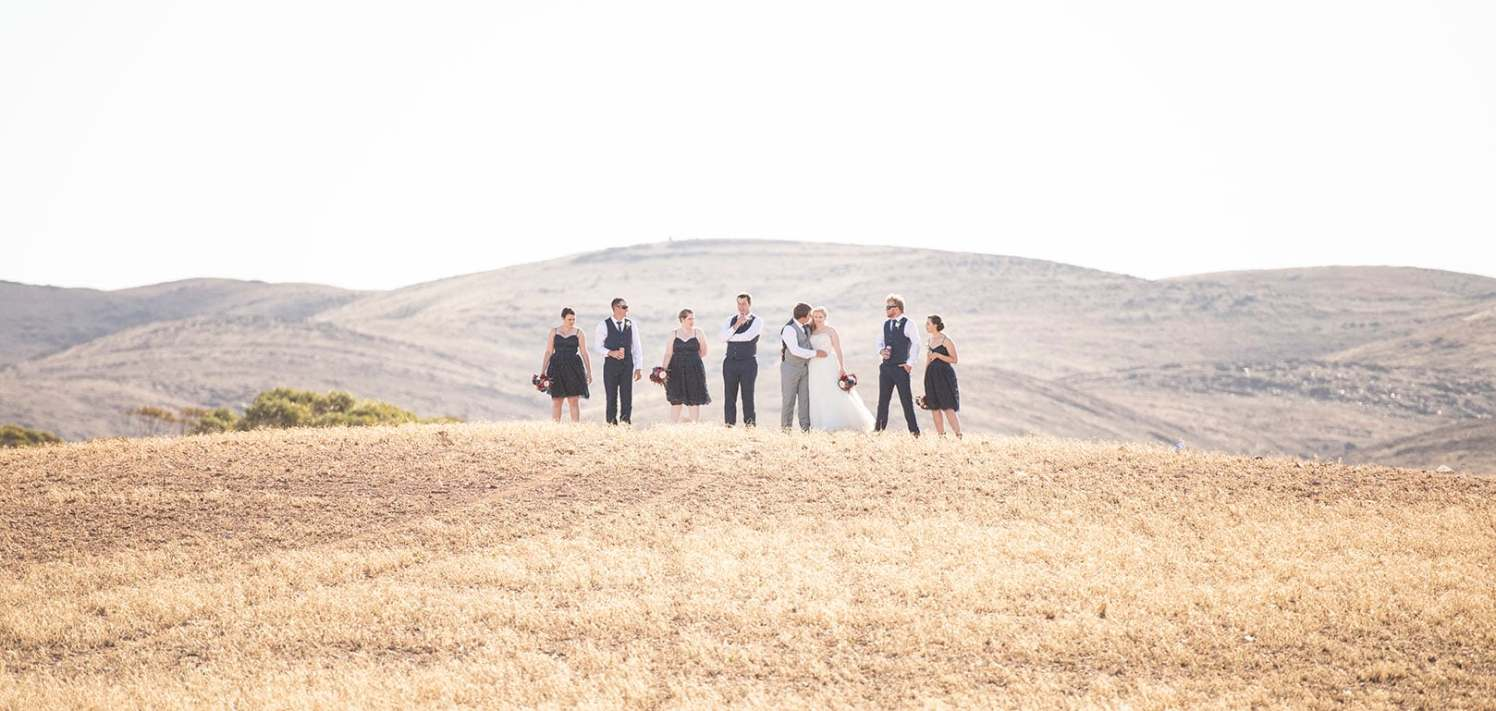 Bridal party on hilltop