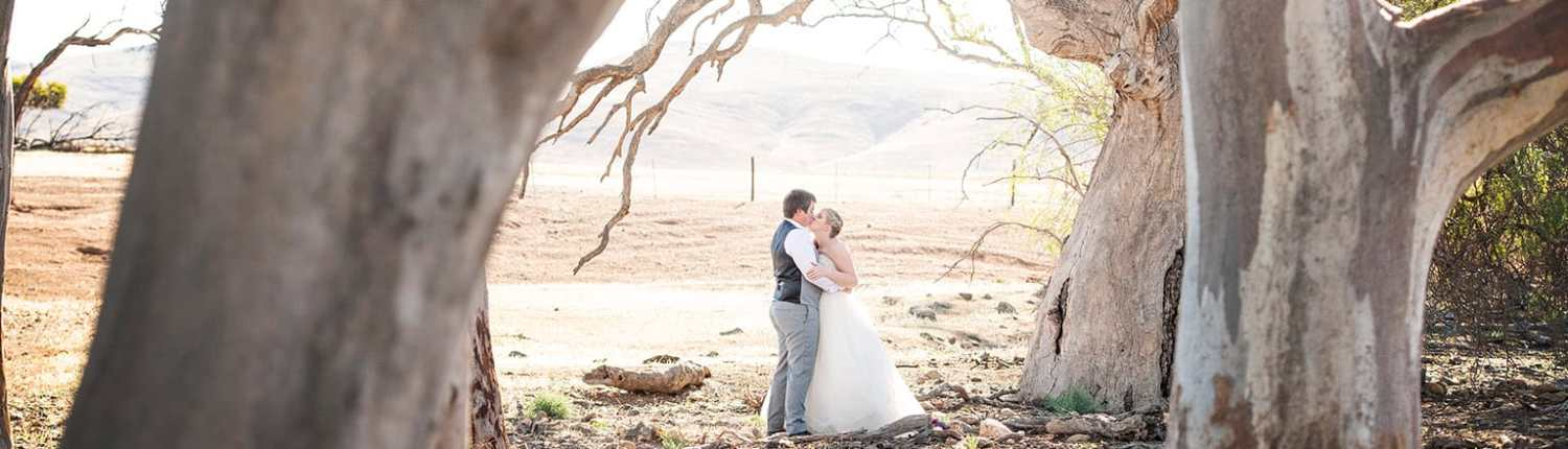 Bride and groom amongst gum trees