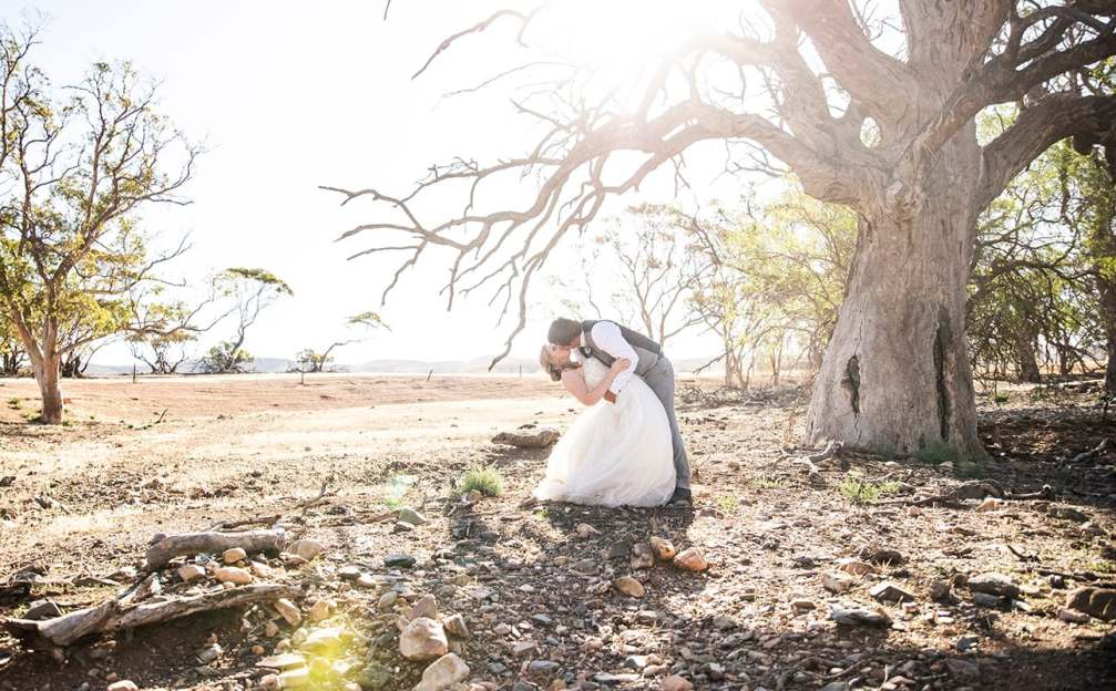 Bride and groom under tree in the sun