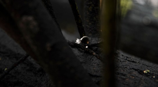 Close up of engagement ring