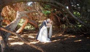 Bride and groom under a hollow tree