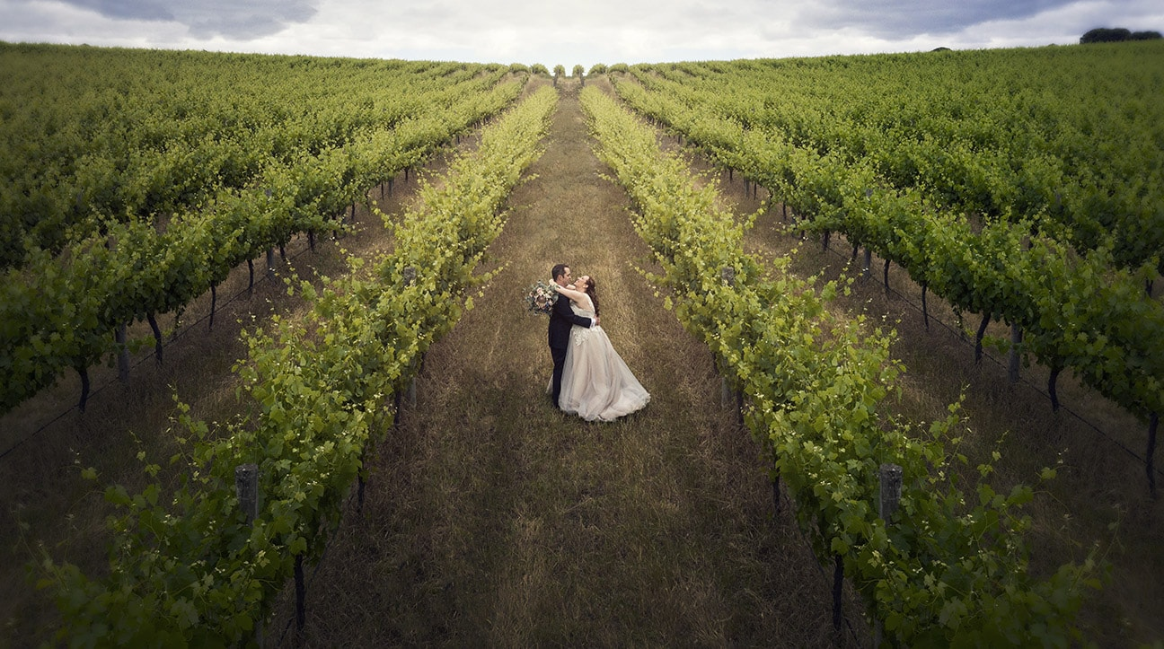 Bride and groom in the Ivybrook Farm vines