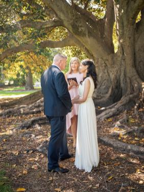 Wedding cceremony under Moreton Bay Fig Tree