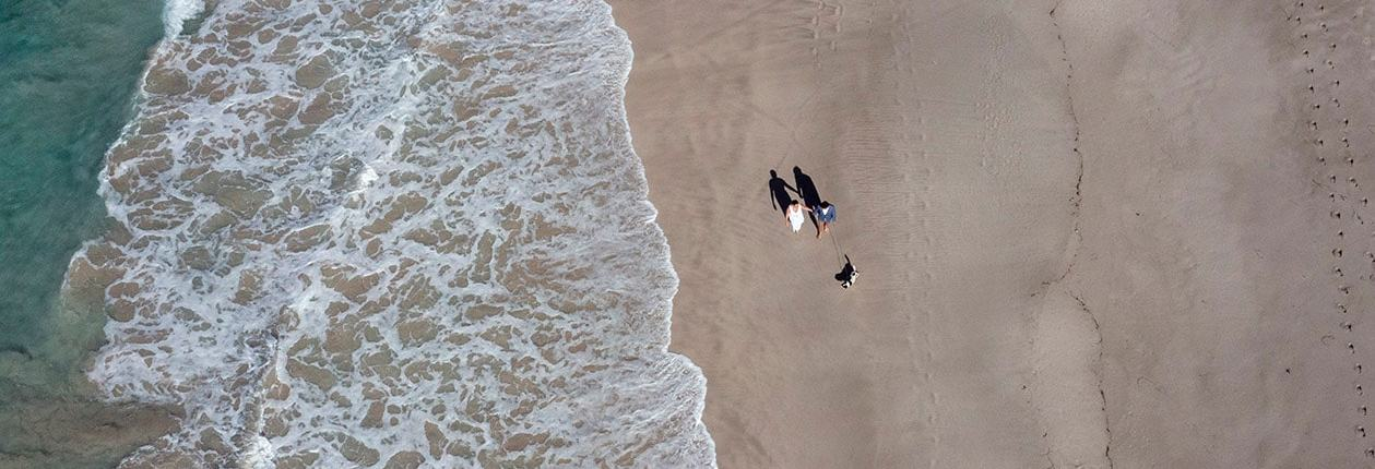bride and groom walking with dog along beach