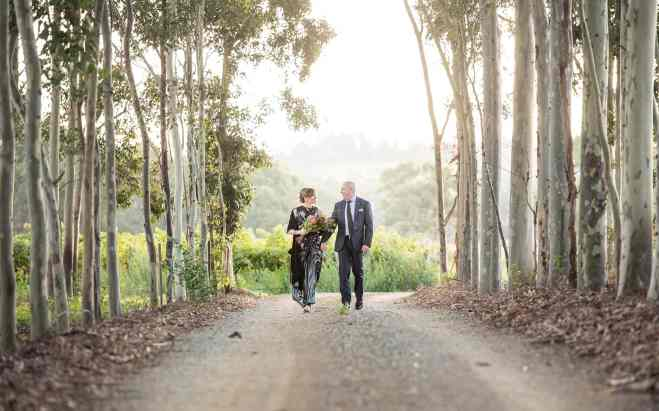 Currant Shed Wedding photo in trees