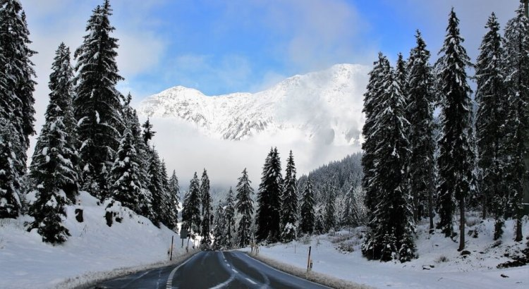 autem do alp