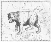 Velká medvědice od Hevelia