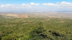 Propadlina v Keni