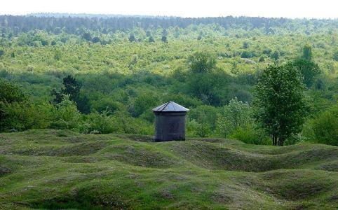 Verdunský les