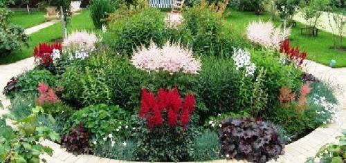 клумба с садовыми цветами