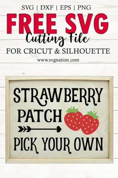 Strawberry Patch SVG File