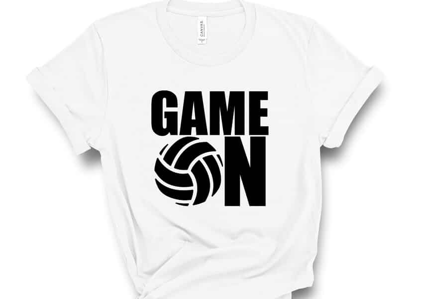 volleyball game on svg