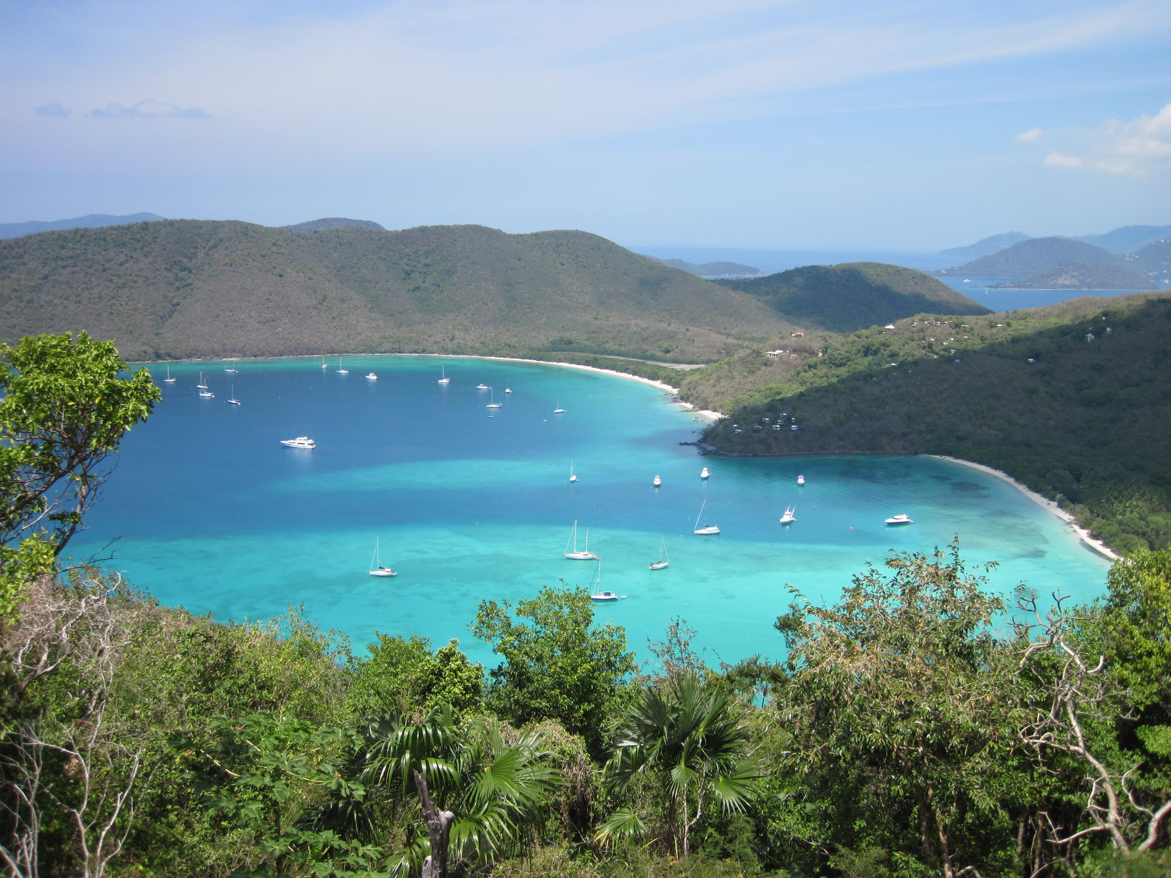 View Of Francis Bay