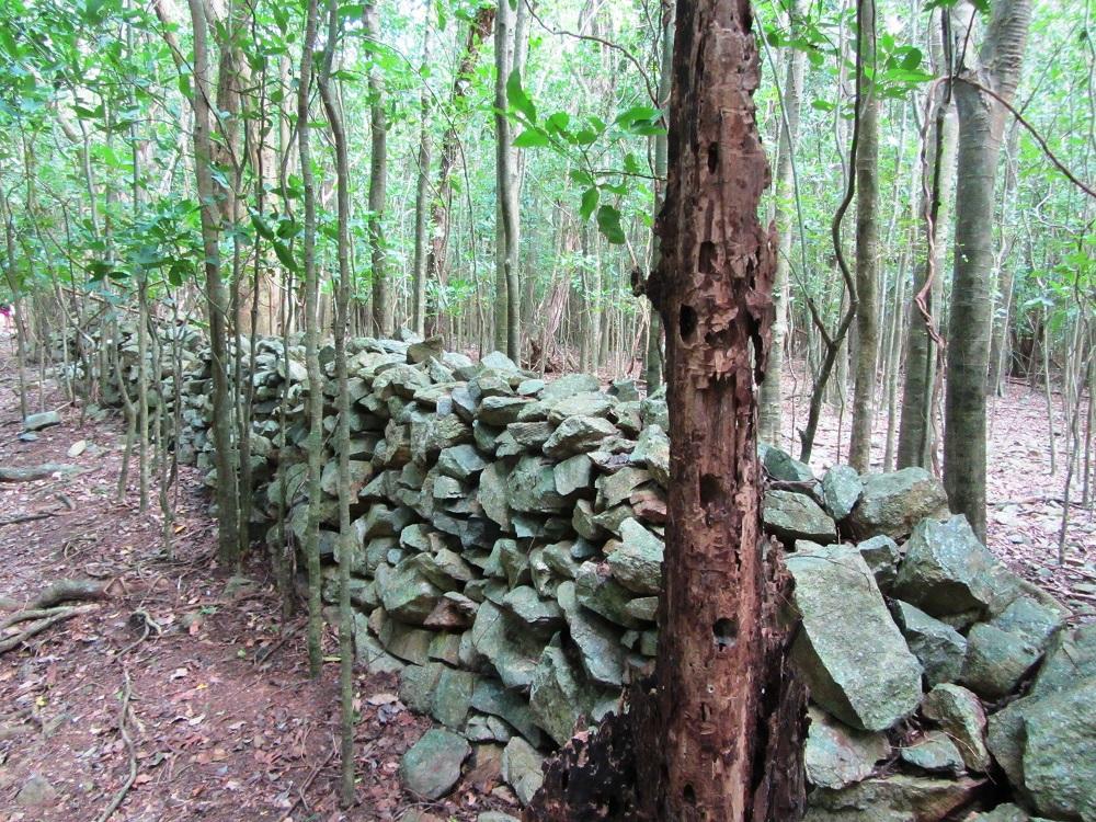 Rock wall at Reef Bay