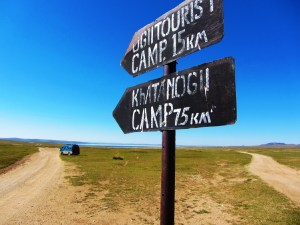 mongolia-3-road-sign