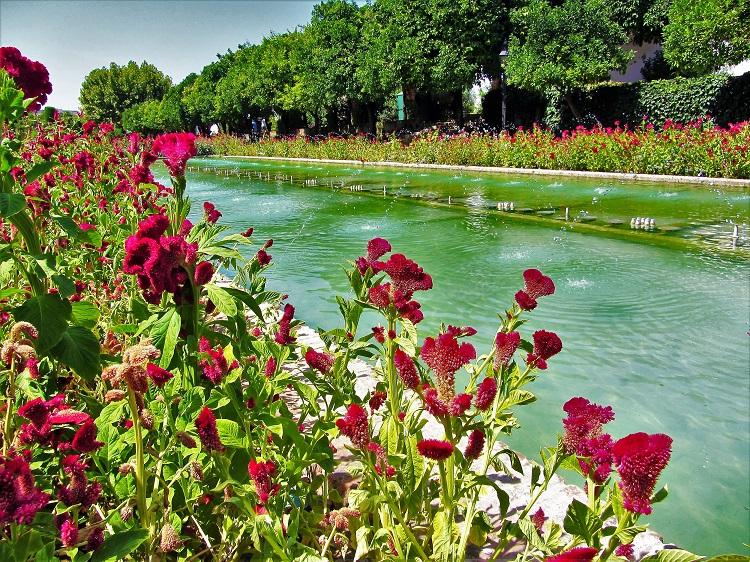 Alcazar de los Reyes Cristianos gardens