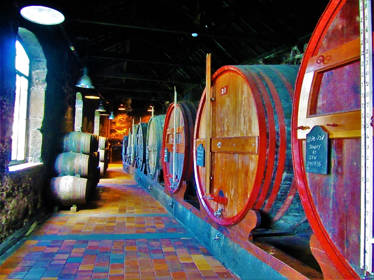 POTD - Portugal - Porto - Burmester Wine Cellar