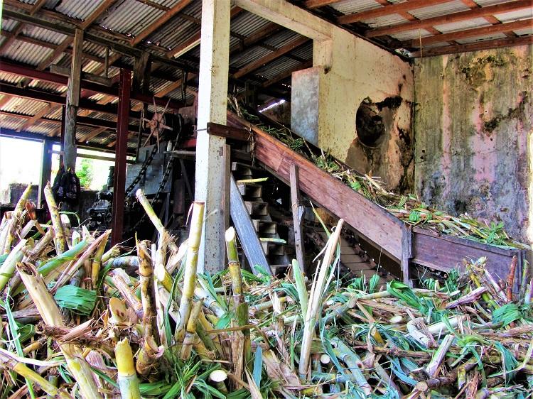 POTD - Cruising - Grenada - 3 River Rum - Cane crushing