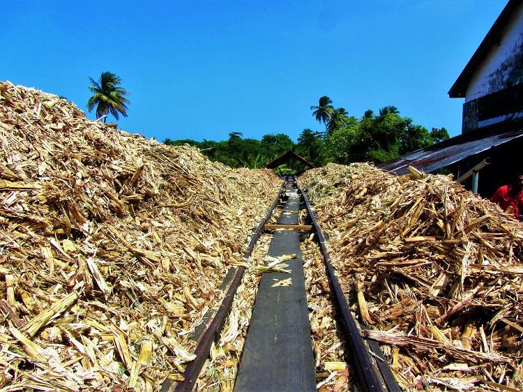 POTD - Cruising - Grenada - Three River Rum - spent cane