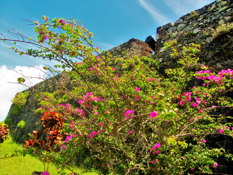 Fort King George wall with flowers