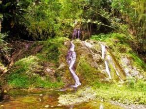 Swiss Family Robinson Waterfall 2